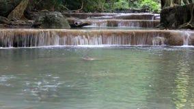Caduta Tailandia dell'acqua di Erawan video d archivio