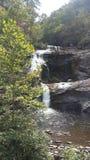 Cadute calve del fiume Immagini Stock
