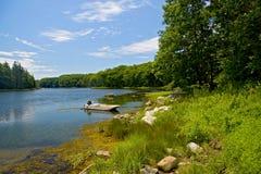 Cadute d'inversione vicine dell'acqua della linea costiera, Maine immagini stock libere da diritti