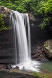 Cadute del cetriolo - parco di stato di Ohiopyle, Pensilvania Fotografia Stock