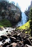 Cadute del falco pescatore in cascata del parco nazionale di Yellowstone bella fotografia stock