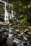 Cadute del Nelson, Tasmania fotografia stock libera da diritti