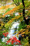 Cadute dell'acqua di Brandywine Fotografia Stock Libera da Diritti