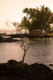 Cadute dell'arcobaleno, grande Isalnd, Hawai Fotografia Stock