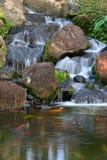 Cadute della località di soggiorno di Kauai Marriott Fotografia Stock Libera da Diritti