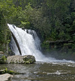 Cadute di Abrams, parco nazionale di Great Smoky Mountains Immagini Stock