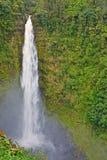 Cadute di Akaka, grande isola, Hawai Immagini Stock Libere da Diritti