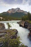 Cadute di Athabasca Fotografia Stock