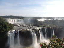 Cadute di Iguaçu Fotografia Stock