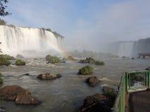 Cadute di Iguaçu Fotografia Stock Libera da Diritti