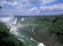 Cadute di Iguacu Immagine Stock Libera da Diritti