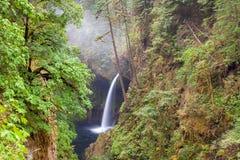 Cadute di Metlako nella gola Oregon U.S.A. del fiume Columbia Immagine Stock