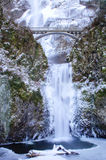 Cadute di Multnomah congelate Fotografia Stock Libera da Diritti