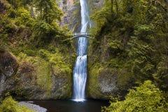 Cadute di Multnomah da Benson Bridge alla gola Oregon del fiume Columbia nella stagione primaverile Portland Oregon U fotografia stock libera da diritti