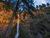 Cadute di Multnomah - Oregon Immagine Stock