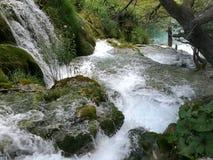 Cadute di Plitvice immagini stock libere da diritti
