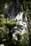 Cadute di Tarawera, Nuova Zelanda Immagine Stock Libera da Diritti