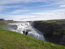 Cadute dorate in Islanda Fotografia Stock Libera da Diritti