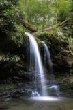 Cadute e rododendri della grotta III Fotografie Stock
