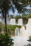 Cadute famose di Iguacu Immagini Stock Libere da Diritti