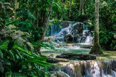 Cadute giamaicane del fiume Immagine Stock