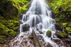 Cadute leggiadramente nella gola del fiume Columbia, l'Oregon Immagini Stock