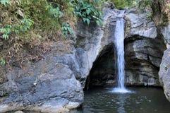 Cadute nel panorama Filippine della giungla A di Palawan dell'isola Fotografia Stock Libera da Diritti