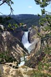 Cadute più basse del Yellowstone fotografia stock libera da diritti