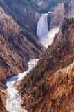 Cadute più basse del Yellowstone Fotografie Stock Libere da Diritti