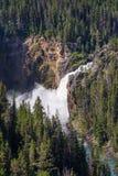 Cadute più basse di Yellowstone, Wyoming Grand Canyon del parco di Yellowstone, il fiume Yellowstone Immagini Stock Libere da Diritti