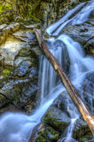 Cadute precipitanti a cascata dell'insenatura della neve Fotografia Stock Libera da Diritti