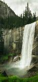 Cadute primaverili nella sosta nazionale del Yosemite fotografia stock
