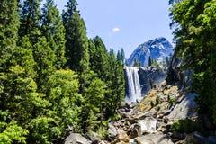 Cadute primaverili, parco nazionale di Yosemite, California, U.S.A. Immagini Stock Libere da Diritti