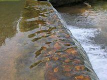 Rocky Falls Fotografie Stock
