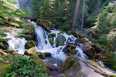 Cadute sceniche di Strada-Watson della Foresta-canaglia-Umpqua nazionale dell'Oregon-Umpqua Immagini Stock