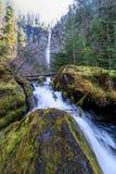 Cadute sceniche di Strada-Watson della Foresta-canaglia-Umpqua nazionale dell'Oregon-Umpqua Immagine Stock