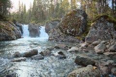 Cadute su un flusso in legno nordico Fotografia Stock Libera da Diritti