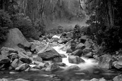 Cadute a valle e nuziali di velare Fotografie Stock