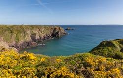 Caerfai Bay Pembrokeshire West Wales UK Stock Photography