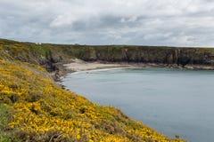 Caerfai Bay West Wales UK Stock Photo