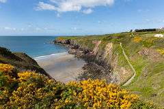 Caerfai Bay West Wales UK. Caerfai Bay Pembrokeshire West Wales UK near St Davids and in the Coast National Park.   The Pembrokeshire Coast Path passes alongside Royalty Free Stock Image