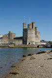 Caernarfon castle. Stock Photography