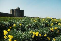 caerphilly замок Стоковая Фотография RF