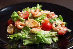 caesar γαρίδες σαλάτας Στοκ φωτογραφίες με δικαίωμα ελεύθερης χρήσης