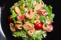 caesar γαρίδες σαλάτας Στοκ εικόνες με δικαίωμα ελεύθερης χρήσης