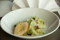 Caesar σαλάτα πιάτων με croutons εύγευστα Στοκ εικόνα με δικαίωμα ελεύθερης χρήσης