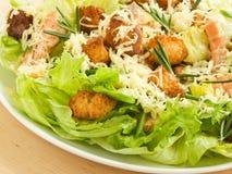 caesar σαλάτα στοκ εικόνες