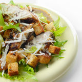 Caesar chicken salad on white background Royalty Free Stock Images