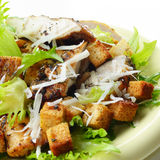 Caesar chicken salad on white background Stock Photos