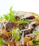 Caesar chicken salad on white background Royalty Free Stock Photography